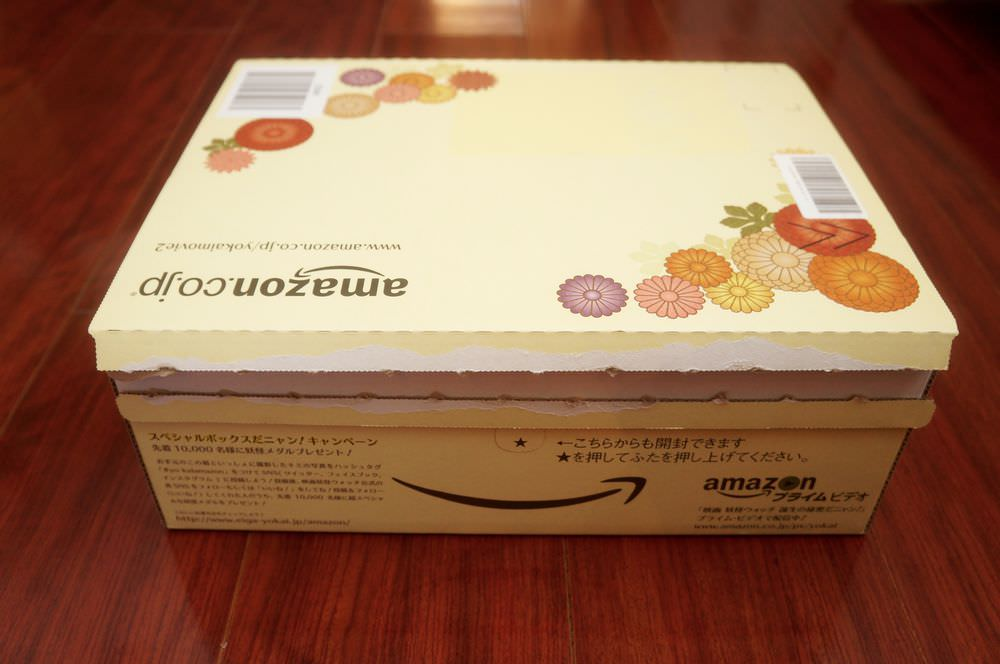 2016-new-year-amazon-yokai-cardboard-box-00003