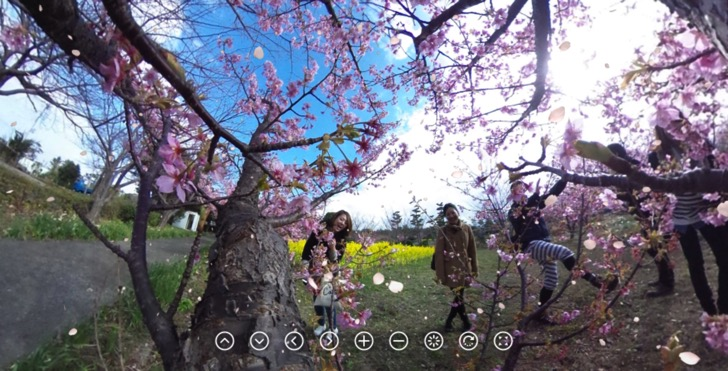 New 3d sakura feature on theta360